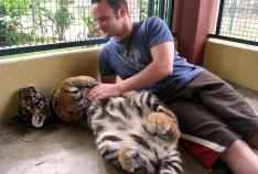wayfinding-thailand-tigers-12