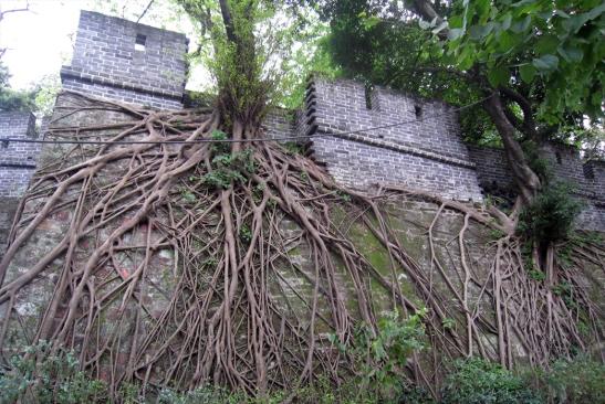 wayfinding-guangzhou1-china-19