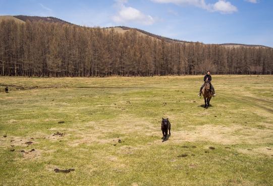 wayfinding-mongolia-gerCamp-33